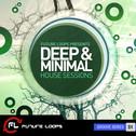 Deep & Minimal House Sessions