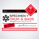 DLR: Specimen Y Drum & Bass