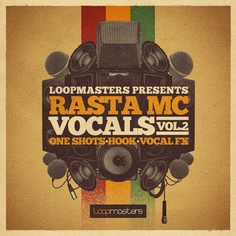 Rasta MC Vocals Vol 2