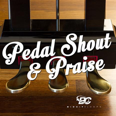 Pedal Shout & Praise