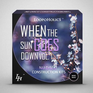 When The Sun Goes Down Vol 1: Nu Disco