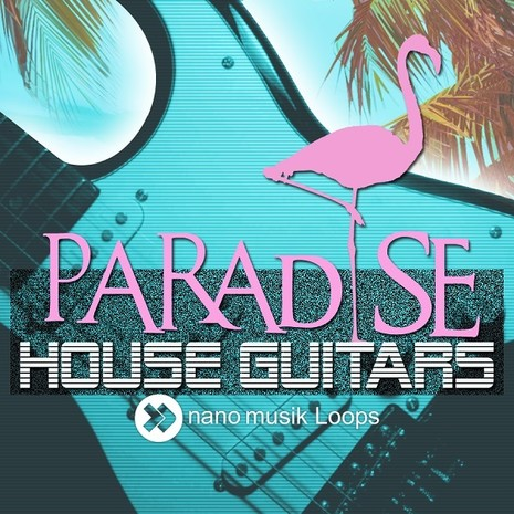 Paradise House Guitars