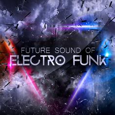 Future Sound Of Electro Funk
