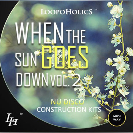 When The Sun Goes Down Vol 2: Nu Disco Kits