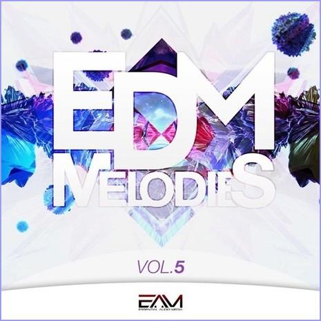 EDM Melodies Vol 5