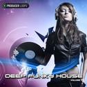 Deep Funky House Vol 5