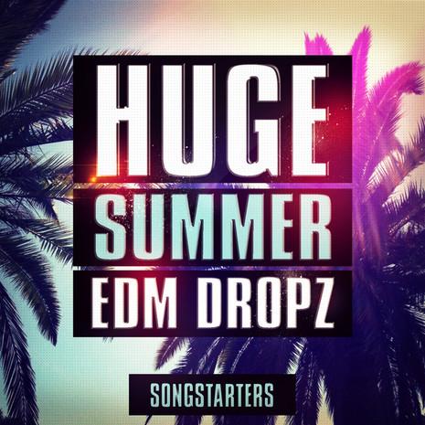 Huge Summer EDM Dropz Songstarters