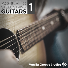 Acoustic Steel String Guitars Vol 1
