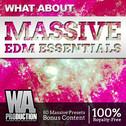 What About: Massive EDM Essentials