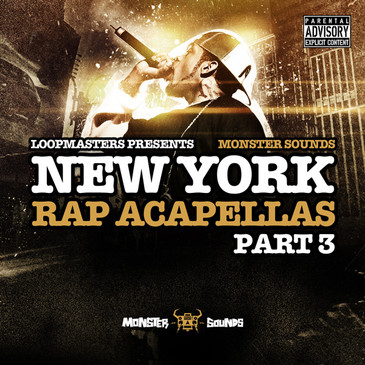 New York Rap Acapellas Vol 3
