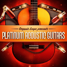 Platinum Acoustic Guitars