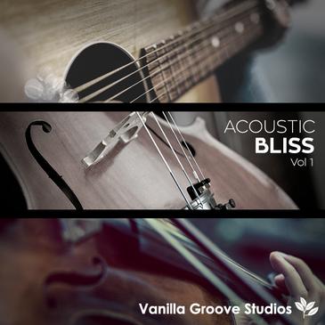 Acoustic Bliss Vol 1