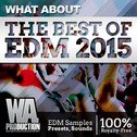 What About: The Best Of EDM 2015