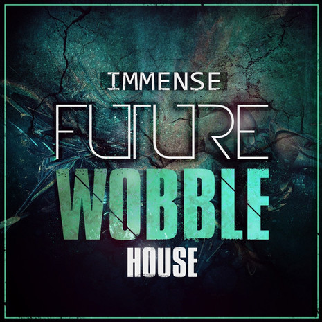 Immense Future Wobble House