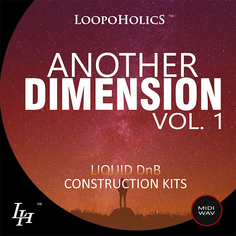 Another Dimension Vol 1: Liquid DnB
