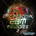 Epic Festival EDM Melodies 2
