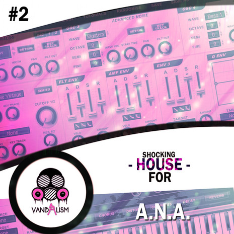 Shocking House For A.N.A. 2