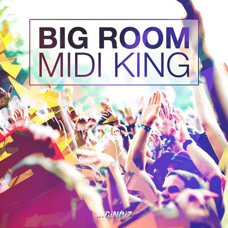 Big Room: MIDI King