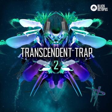 Paradigm Theorem: Transcendent Trap 2