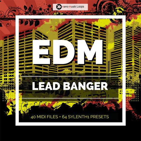 EDM Lead Banger
