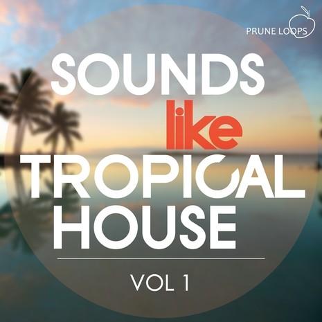 Sounds Like Tropical House Vol 1