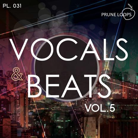 Vocals & Beats Vol 5
