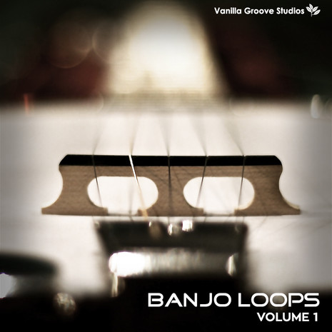 Banjo Loops Vol 1