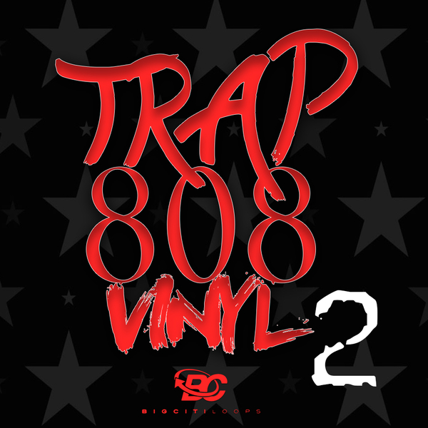 Trap 808 Vinyl 2