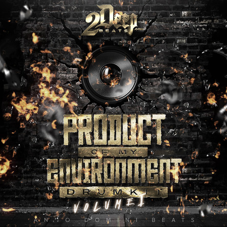 Product Of My Environment Vol 1