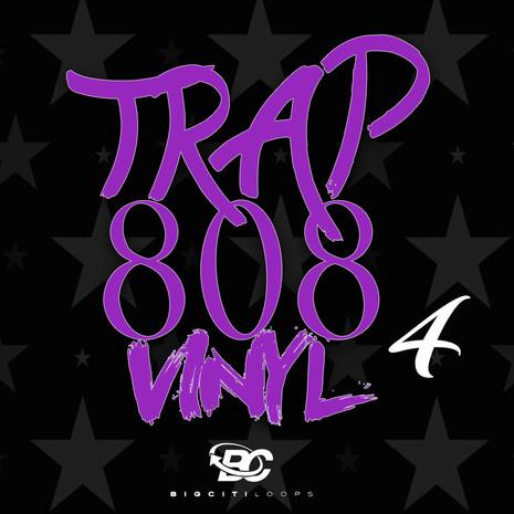 Trap 808 Vinyl 4
