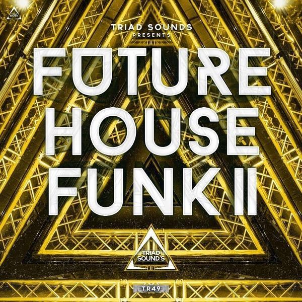 Future House Funk 2