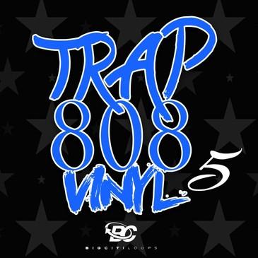 Trap 808 Vinyl 5