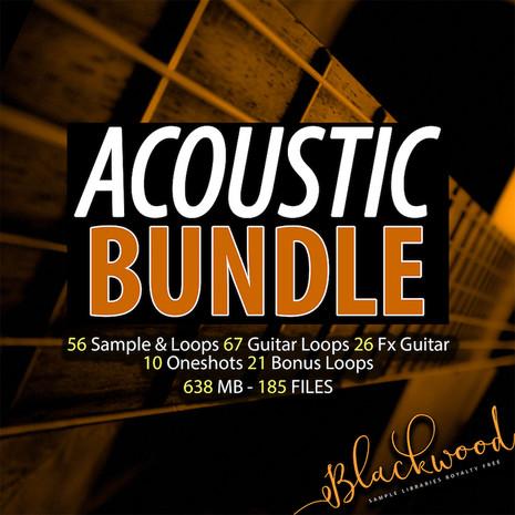 Acoustic Bundle
