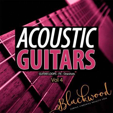 Acoustic Guitars 4