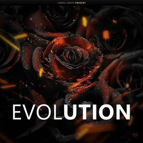 Black Roses Evolution