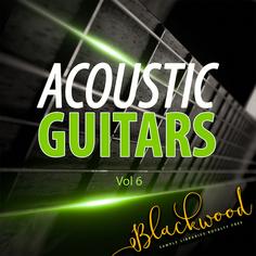 Acoustic Guitars 6