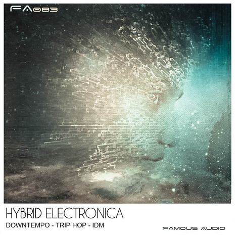 Hybrid Electronica
