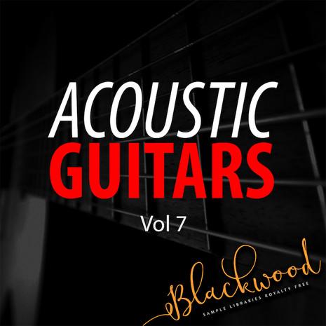 Acoustic Guitars 7