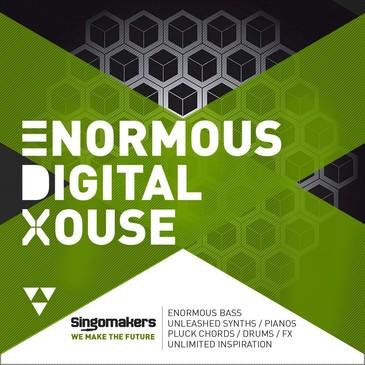 Enormous Digital House