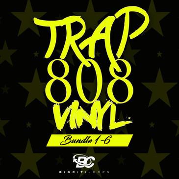 Trap 808 Vinyl Bundle (Vols 1-6)