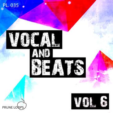 Vocals And Beats Vol 6