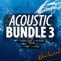 Acoustic Bundle 3