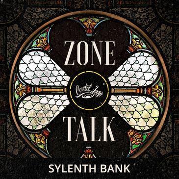 Zone Talk: Sylenth Bank