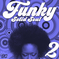 Funky Solid Soul 2