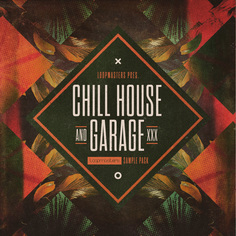 Chill House & Garage
