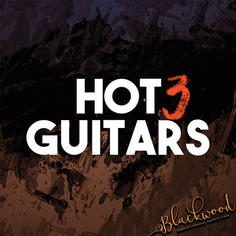 Hot Guitars 3