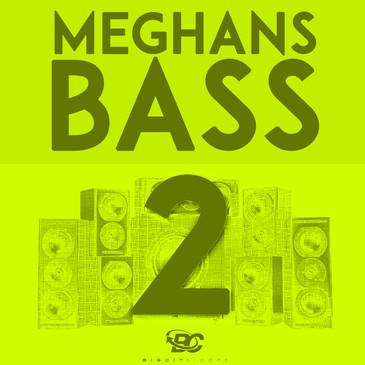 Meghan's Bass 2