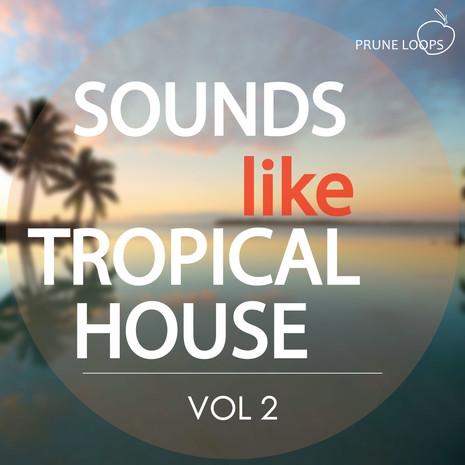 Sounds Like Tropical House Vol 2