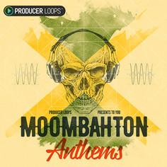 Moombahton Sample Packs & Loops | Producer Loops