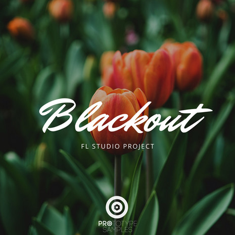 Blackout: FL Studio Project